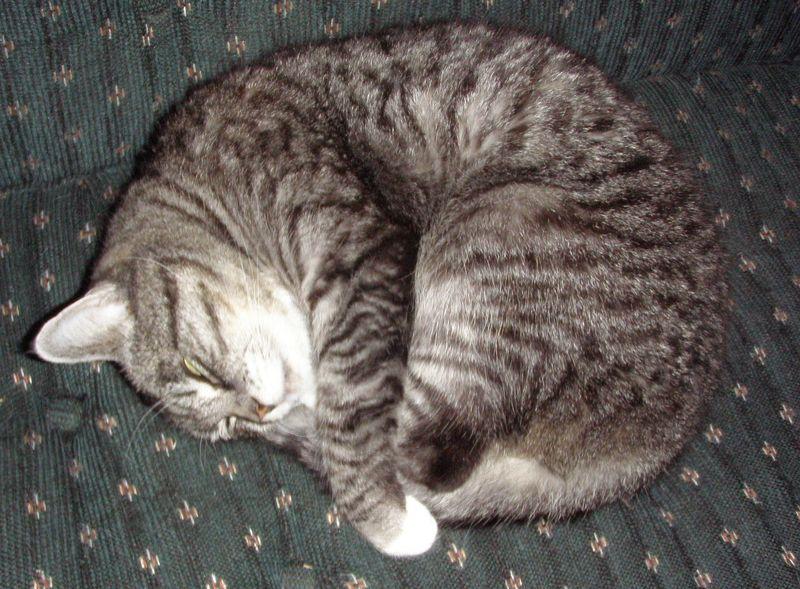 Sleeping buttons